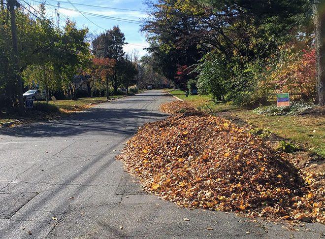 Curbside Leaf Pickup Service