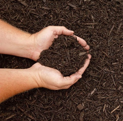 ProductSupportMulch