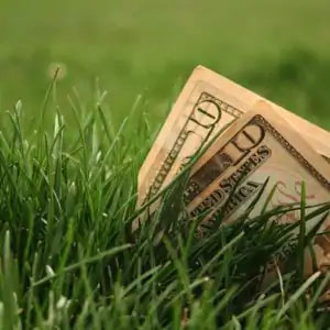 6 Tips To Save Money On Lawn Care In Fort Wayne